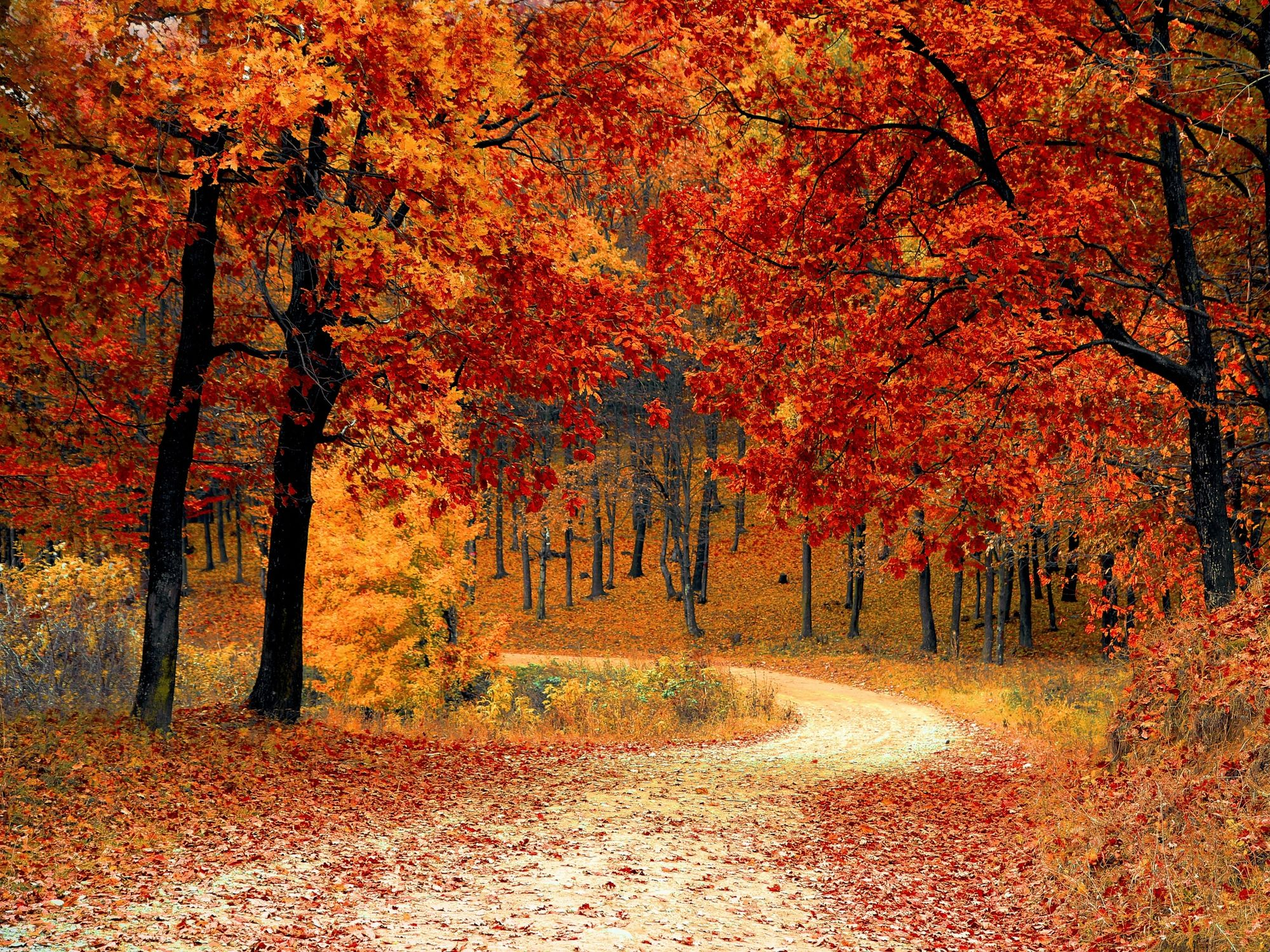 20 Fall Destinations in the USA for a fun family weekend